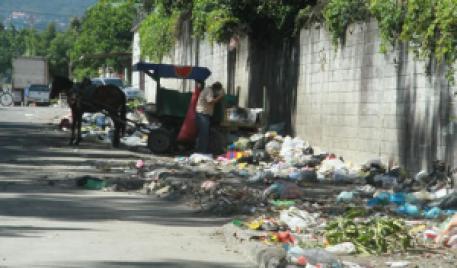 Botaderos-de-basura-clandestinos-en-San-Pedro-Sula_480_311